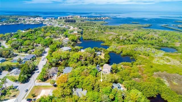 000 Damen Lane, Port Richey, FL 34668 (MLS #U8138139) :: Griffin Group