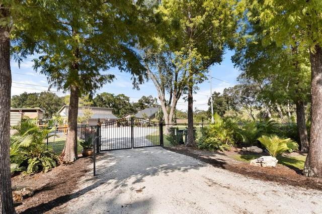 12629 Twin Branch Acres Road, Tampa, FL 33626 (MLS #U8138221) :: Griffin Group