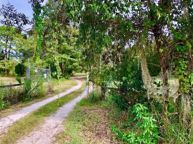 12424 Choctaw Trail, Hudson, FL 34669 (MLS #U8138225) :: Delgado Home Team at Keller Williams