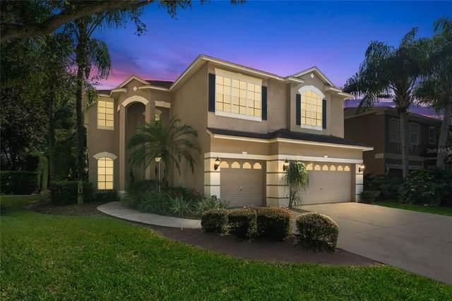 4118 Grandchamp Circle, Palm Harbor, FL 34685 (MLS #U8138625) :: Keller Williams Realty Select