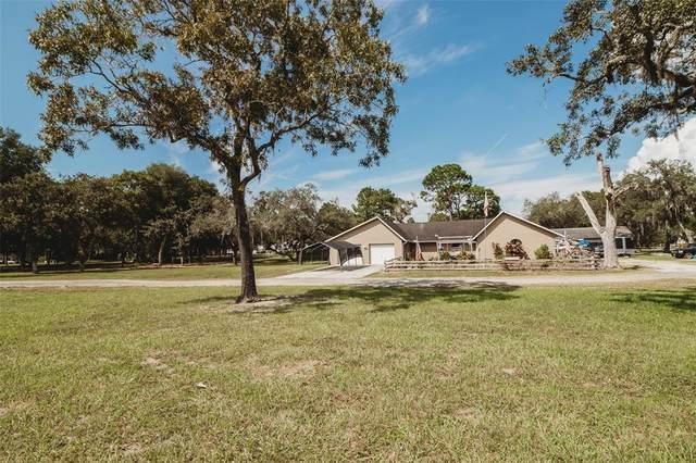 10311 Kitten Trail, Hudson, FL 34669 (MLS #U8138772) :: The Nathan Bangs Group