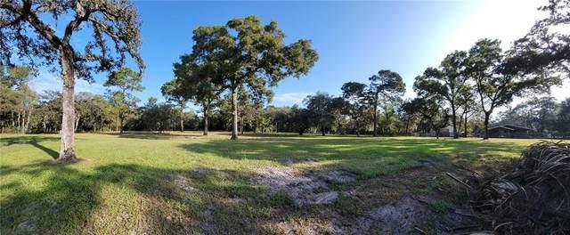 0 Kitten Trail, Hudson, FL 34669 (MLS #U8138798) :: The Nathan Bangs Group