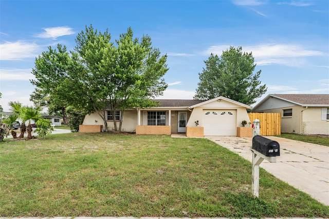 4904 Dogwood Street, New Port Richey, FL 34653 (MLS #U8138902) :: Blue Chip International Realty