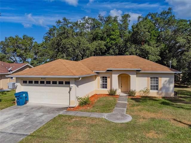 6287 Piedmont Drive, Spring Hill, FL 34606 (MLS #U8138917) :: Keller Williams Suncoast