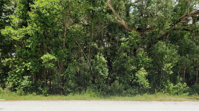Garfield, Brooksville, FL 34604 (MLS #U8138918) :: Everlane Realty