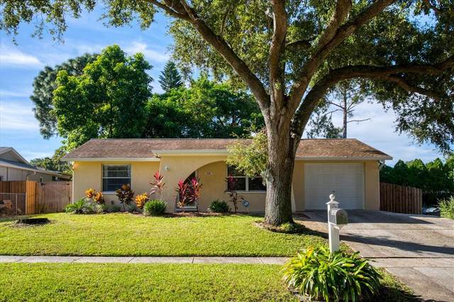 1321 Castleworks Lane, Tarpon Springs, FL 34689 (MLS #U8139032) :: McConnell and Associates