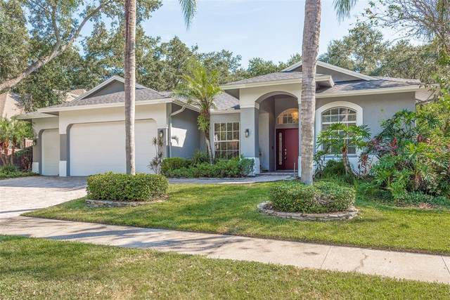 1704 Country Trails Drive, Safety Harbor, FL 34695 (MLS #U8139034) :: RE/MAX Marketing Specialists