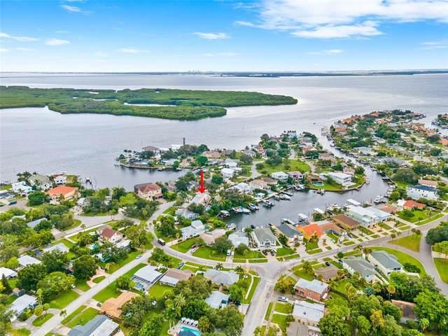 1902 Arrowhead Drive NE, St Petersburg, FL 33703 (MLS #U8139046) :: Expert Advisors Group