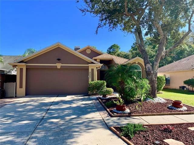 8553 Manassas Road, Tampa, FL 33635 (MLS #U8139345) :: Cartwright Realty