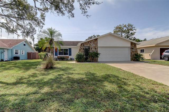 1603 Avoca Drive, Tarpon Springs, FL 34689 (MLS #U8139365) :: Orlando Homes Finder Team