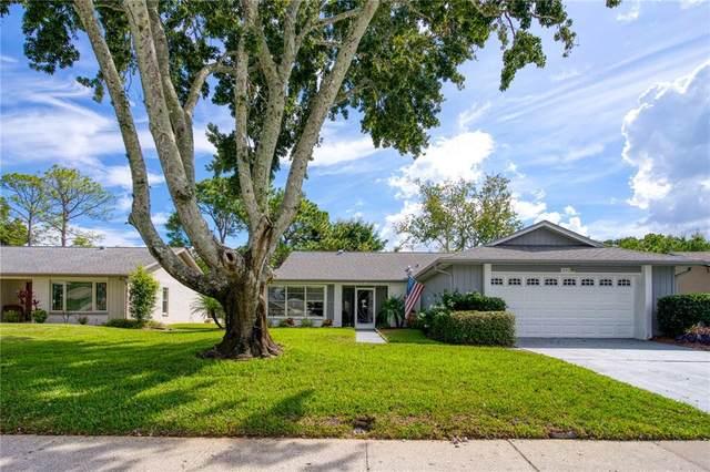3148 Brunswick Circle, Palm Harbor, FL 34684 (MLS #U8139366) :: Keller Williams Suncoast
