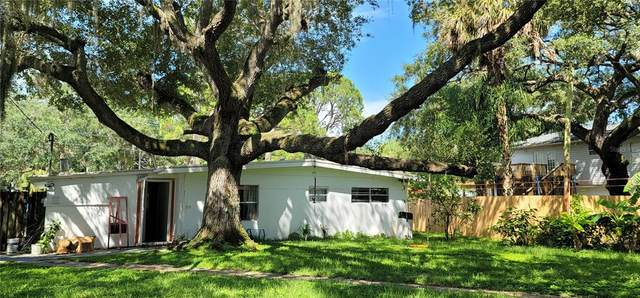7242 Oelsner Street, New Port Richey, FL 34652 (MLS #U8139495) :: McConnell and Associates