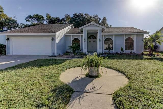 4632 Basswood Street, Land O Lakes, FL 34639 (MLS #U8139565) :: EXIT King Realty