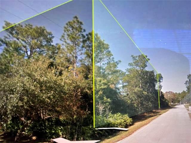 2158 S Bascombe, Homosassa, FL 34448 (MLS #U8139595) :: Global Properties Realty & Investments