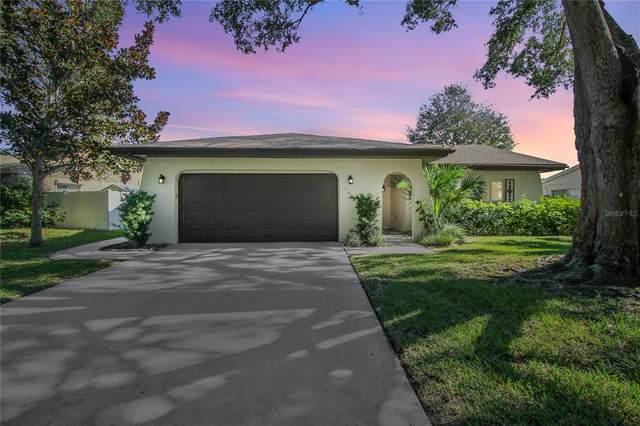 2041 Orangeside Road, Palm Harbor, FL 34683 (MLS #U8139646) :: Everlane Realty