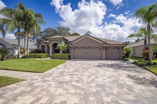 695 Salt Lake Drive, Tarpon Springs, FL 34689 (MLS #U8139747) :: Medway Realty