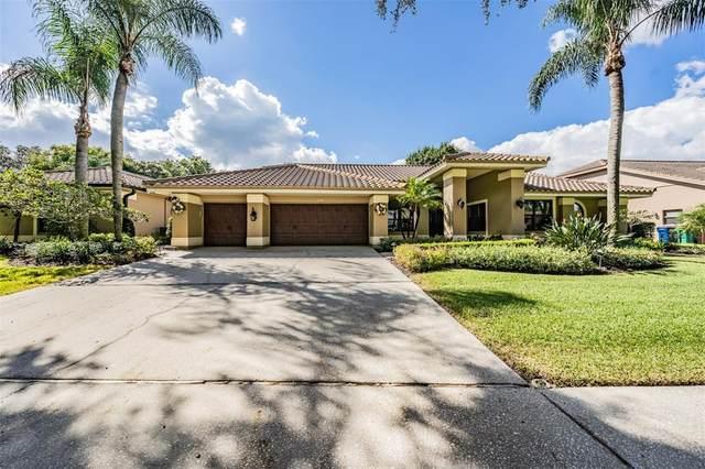 2136 Pinnacle Circle N, Palm Harbor, FL 34684 (MLS #U8139946) :: Expert Advisors Group