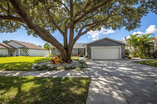6602 Seafairer Drive, Tampa, FL 33615 (MLS #U8139950) :: The Hesse Team