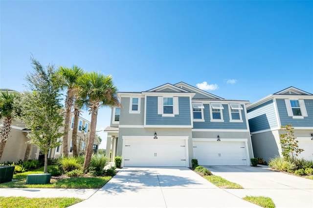 8001 Palm Key Avenue, Oldsmar, FL 34677 (#U8139962) :: Caine Luxury Team