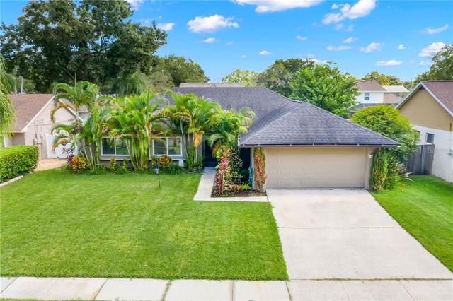 15705 Pennington Road, Tampa, FL 33624 (MLS #U8139977) :: CGY Realty