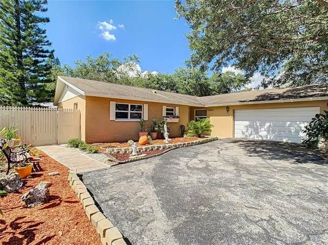 15504 Cromwell Drive, Clearwater, FL 33764 (MLS #U8140051) :: Bob Paulson with Vylla Home