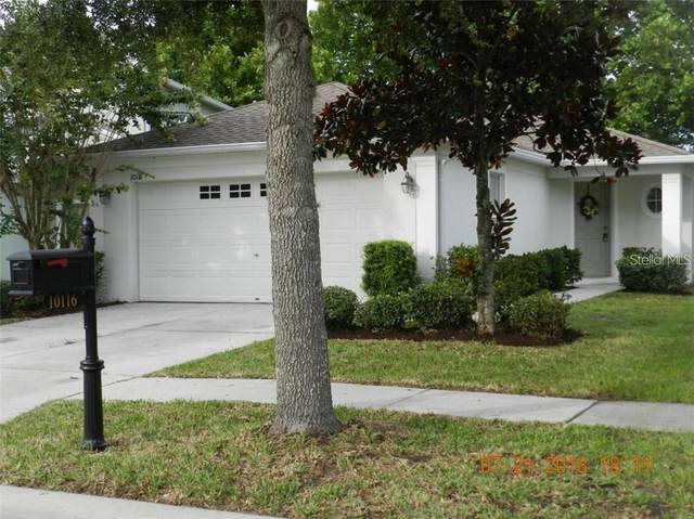 10116 Perthshire Circle, Land O Lakes, FL 34638 (MLS #U8140062) :: Everlane Realty