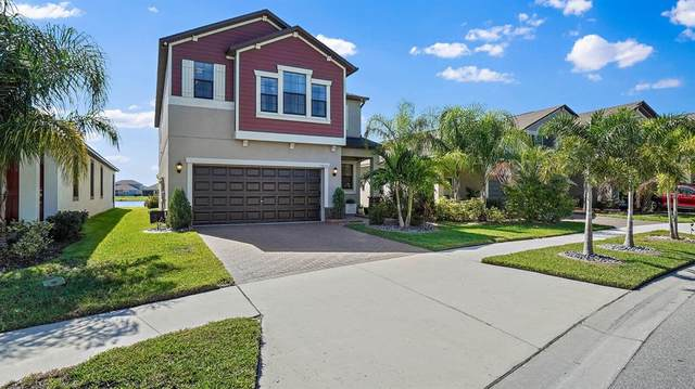 10055 Sage Creek Drive, Sun City Center, FL 33573 (MLS #U8140064) :: Everlane Realty