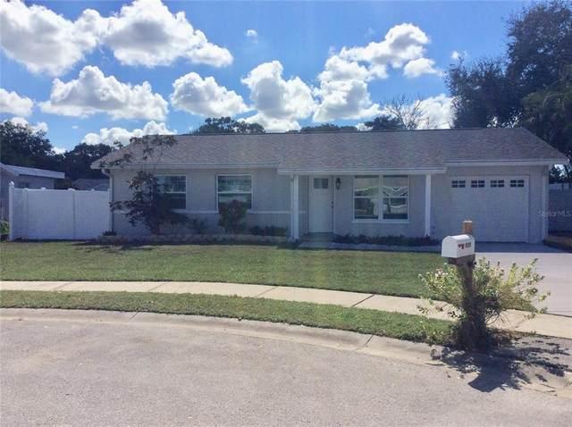 8008 Smoketree Circle, Largo, FL 33773 (MLS #U8140087) :: Charles Rutenberg Realty