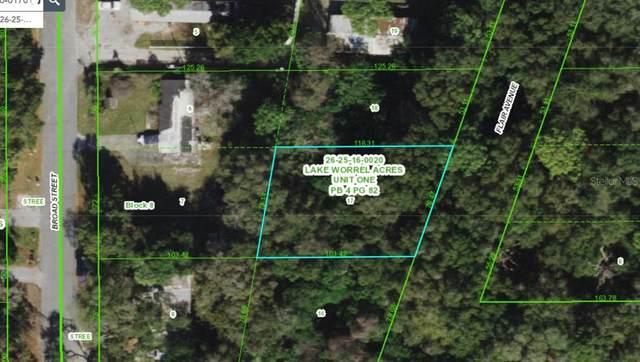 Orange Avenue, New Port Richey, FL 34654 (MLS #U8140101) :: The Duncan Duo Team