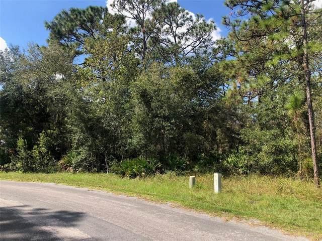 24 Mangrove Court S, Homosassa, FL 34446 (MLS #U8140108) :: Delgado Home Team at Keller Williams