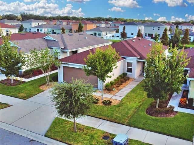 10613 Laguna Plains Drive, Riverview, FL 33578 (MLS #U8140112) :: Team Bohannon