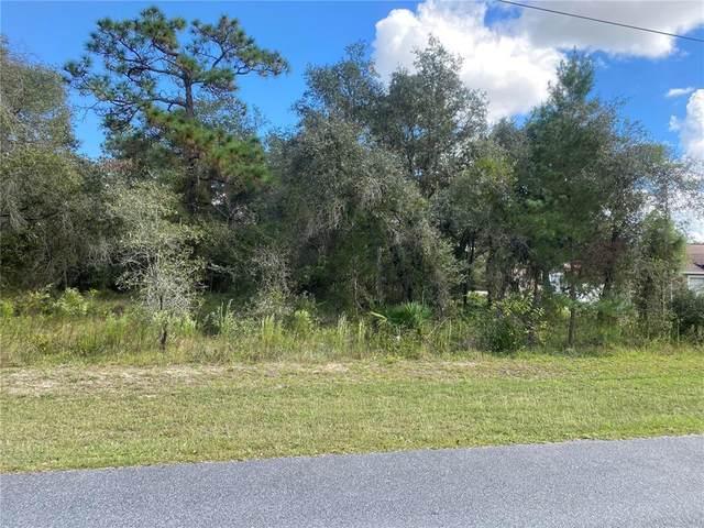 11014 Golden Warbler Road, Brooksville, FL 34613 (MLS #U8140146) :: Everlane Realty