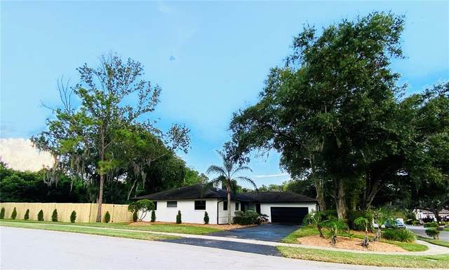 70 Lakeview Court, Palm Harbor, FL 34683 (MLS #U8140181) :: Baird Realty Group