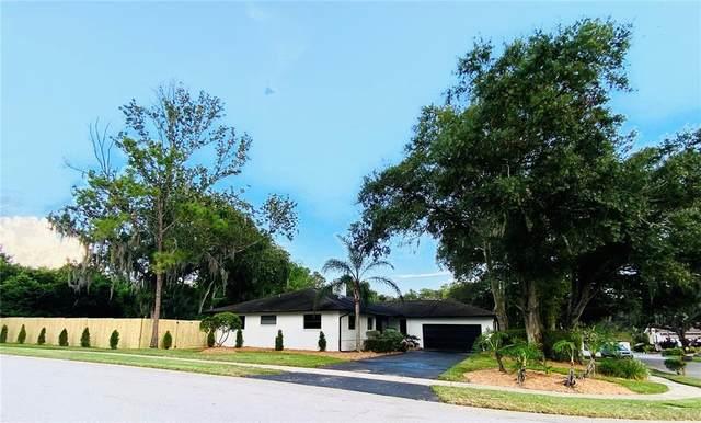 70 Lakeview Court, Palm Harbor, FL 34683 (MLS #U8140181) :: The Heidi Schrock Team