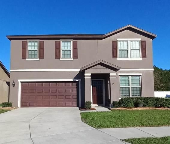 662 Petal Mist Lane, Brooksville, FL 34604 (#U8140186) :: Caine Luxury Team