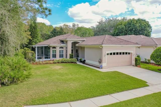 4440 Live Oak Boulevard, Palm Harbor, FL 34685 (MLS #U8140189) :: RE/MAX Marketing Specialists