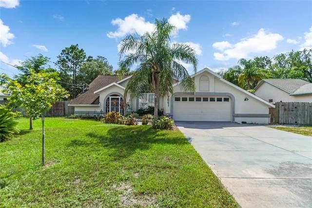 7641 Gates Circle, Spring Hill, FL 34606 (MLS #U8140195) :: Godwin Realty Group