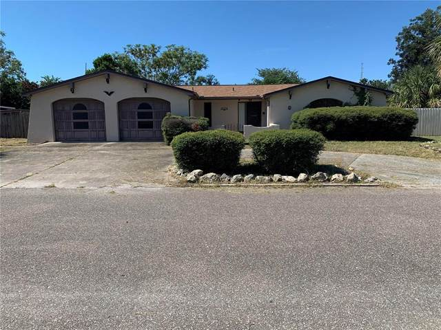 11035 Mckinley Drive, Port Richey, FL 34668 (MLS #U8140219) :: Vacasa Real Estate