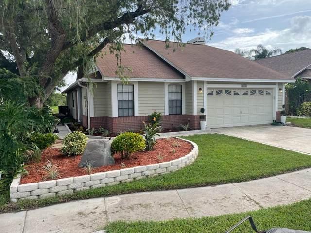 2231 Springrain Drive, Clearwater, FL 33763 (MLS #U8140237) :: Lockhart & Walseth Team, Realtors