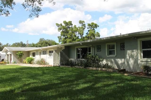 5310 N Tuttle Avenue, Sarasota, FL 34234 (MLS #U8140243) :: Bustamante Real Estate