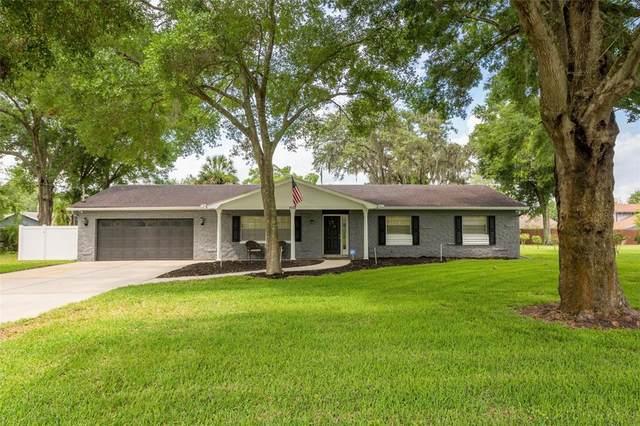 1512 Alder Way, Brandon, FL 33510 (MLS #U8140256) :: Griffin Group