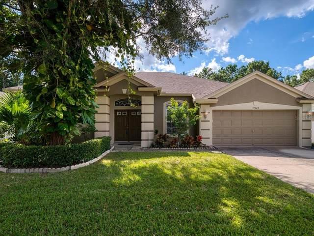 19022 Fern Meadow Loop, Lutz, FL 33558 (MLS #U8140278) :: Future Home Realty