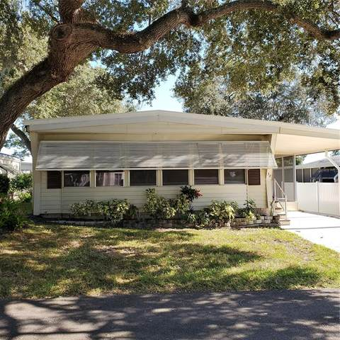 38 New Fawn Court #33, Safety Harbor, FL 34695 (MLS #U8140305) :: Medway Realty