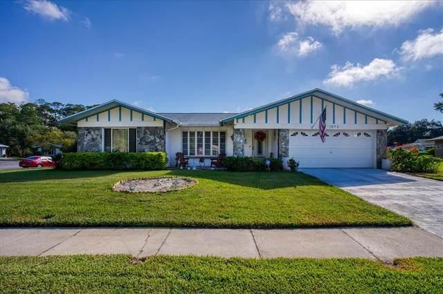 1073 Mainsail Way, Palm Harbor, FL 34685 (MLS #U8140343) :: Cartwright Realty