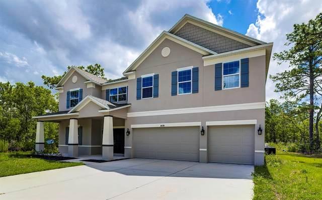 18098 Macek Road, Weeki Wachee, FL 34614 (MLS #U8140422) :: Everlane Realty