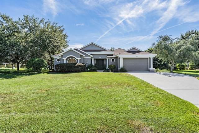 10204 Deer Street, Spring Hill, FL 34608 (MLS #U8140430) :: Pristine Properties