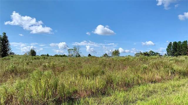 11180 Eskimo Curlew Road, Weeki Wachee, FL 34614 (MLS #U8140475) :: Vacasa Real Estate