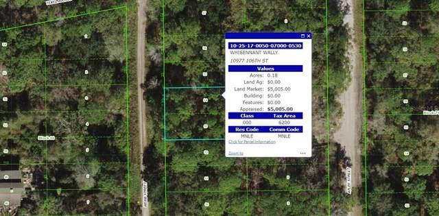 Webb, New Port Richey, FL 34652 (MLS #U8140478) :: Delgado Home Team at Keller Williams