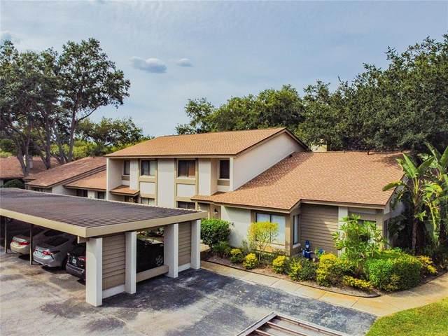 1723 Cypress Trace Drive, Safety Harbor, FL 34695 (MLS #U8140524) :: Blue Chip International Realty