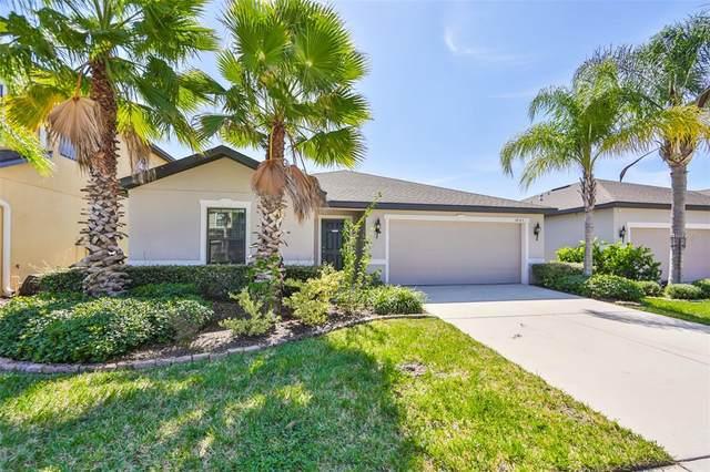 14323 Haddon Mist Drive, Wimauma, FL 33598 (MLS #U8140535) :: Medway Realty